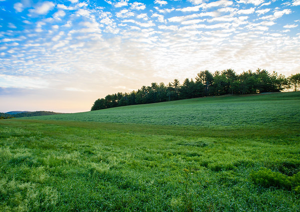 Bragg Hill, Field at Sunrise - Norwich, Vermont