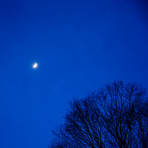 Night Sky and Moon / Norwich, Vermont