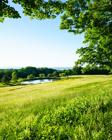 Bragg Hill / Norwich, Vermont