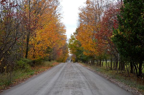 Vermont Falling