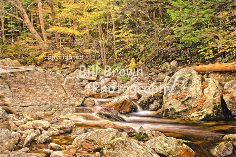 Between the Rocks (colored pencil)