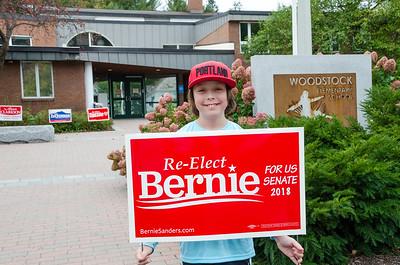 Bernie Rally 2018