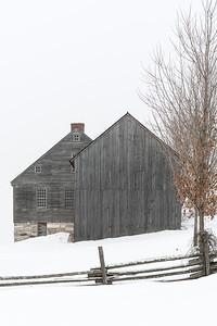 Pastoral in Gray
