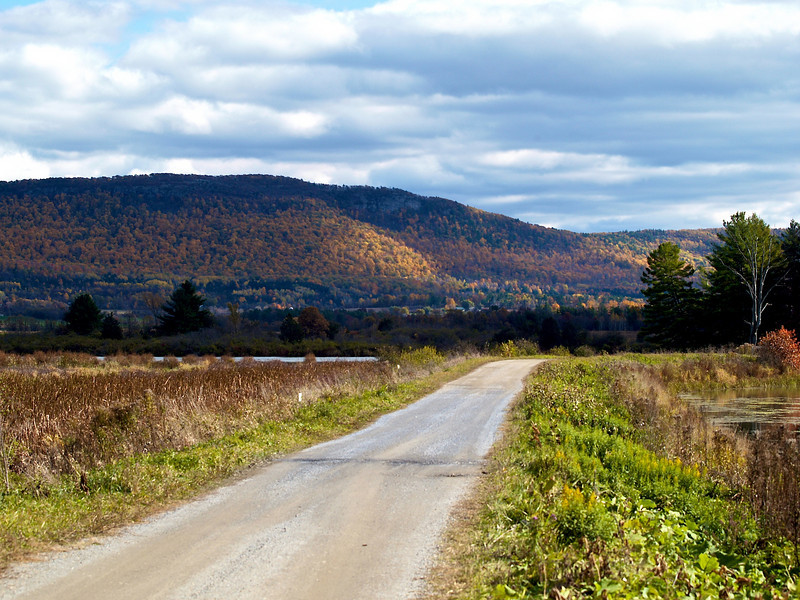 Autumn in Vermont, 2009