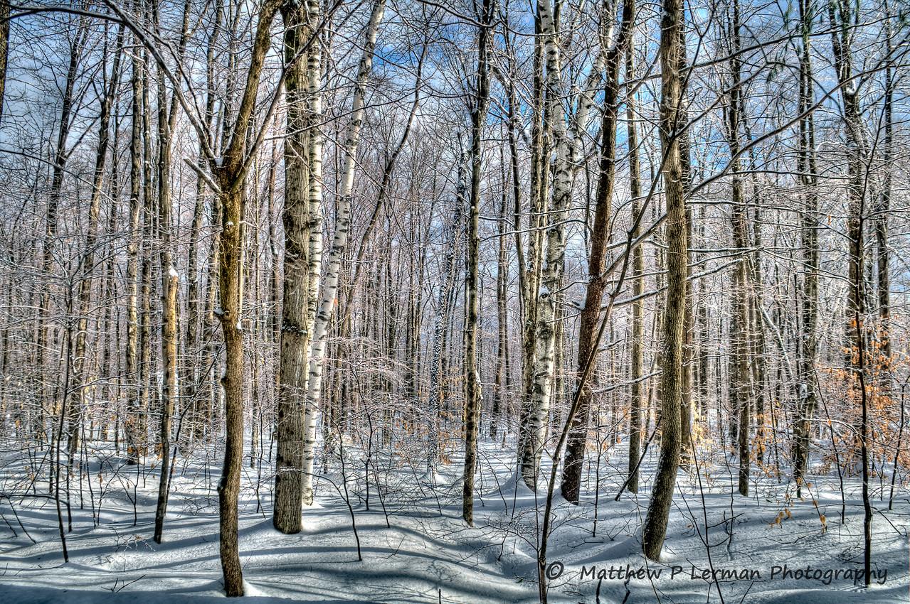Tranquillity    (Three Maple Drive, Manchester Center, Vermont) #186