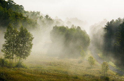 Summer Morning Mists