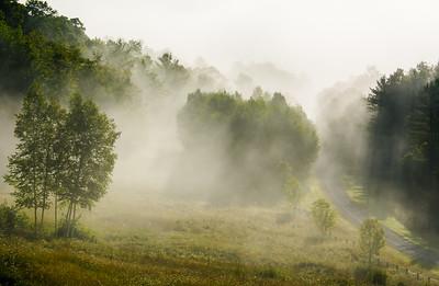 Summer Morning Mists
