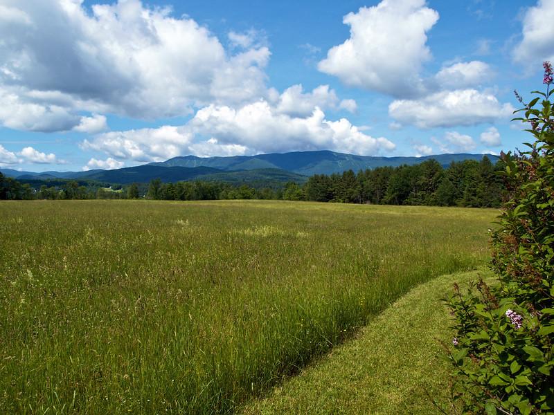 Vermont farm, summer