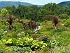 von Trapp nursery, Vermont