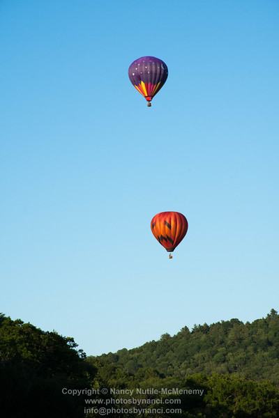 Balloons on A Summer Evening