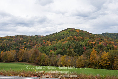 Fall Foliage West Windsor VT