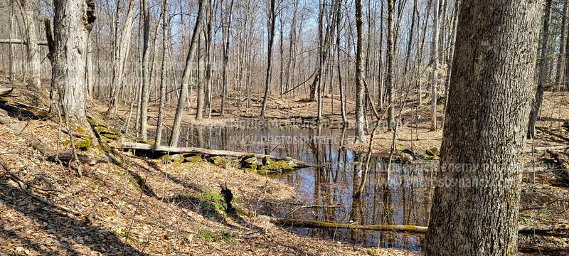 April 4 Hike