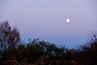 Hunter's Moon