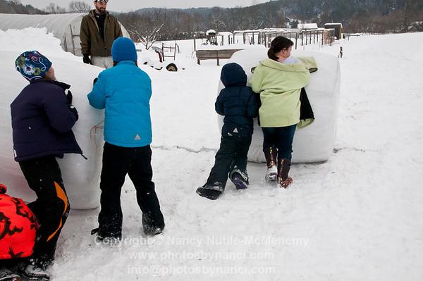 Winter Farm Olympics