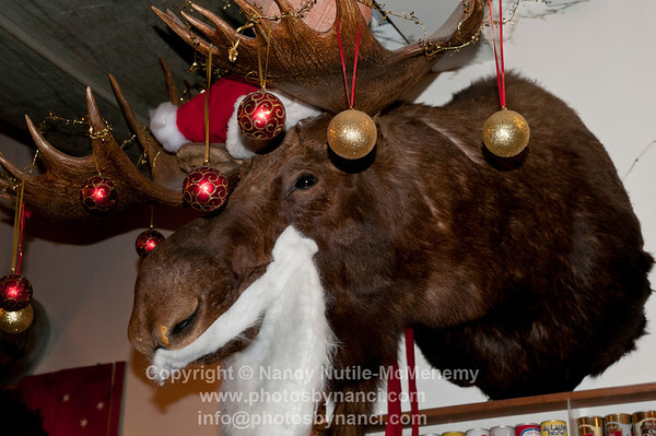 Holiday Moose Mascot