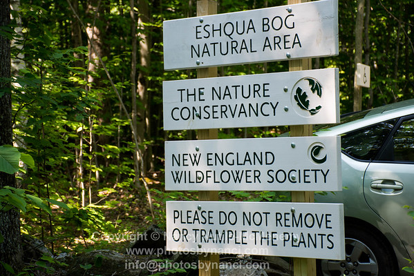 Eshqua Bog Guided Walk