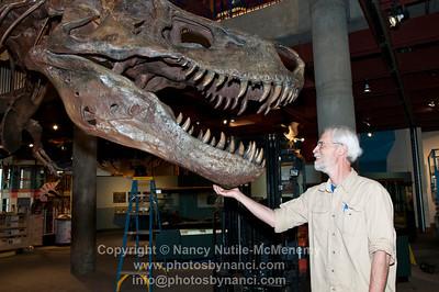 A T rex Named Sue