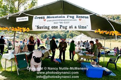 11th Annual Pug Social