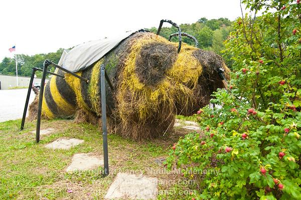 2014 Killington Hay Festival