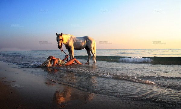 sexy woman on beach playing with white horse and enjoying the friendship