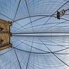 Brooklyn Bridge, Morning Golden Hour, Vertical Vertigo NYC Series