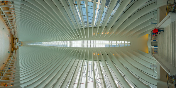 Oculus at the World Trade Center, Near Stairs, Vertical Vertigo NYC Series