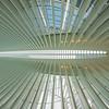 Oculus at the World Trade Center, Near Stairs, Vertical Vertigo NYC Series
