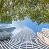 Bryant Park and 42nd Street, Afternoon, Vertical Vertigo NYC Series