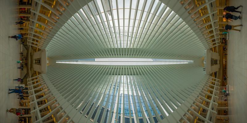 Oculus at the World Trade Center, Middle of Floor, Vertical Vertigo NYC