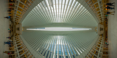 Oculus at the World Trade Center, Middle of Floor, Vertical Vertigo NYC
