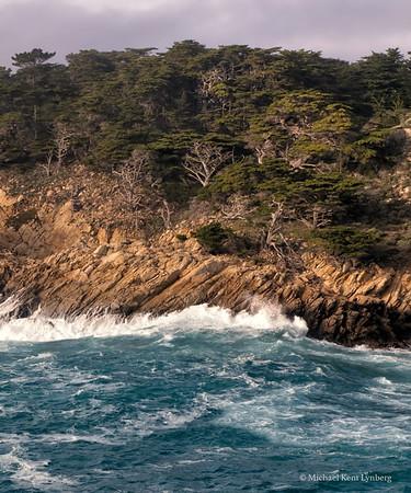 Point Lobos Cypress Grove