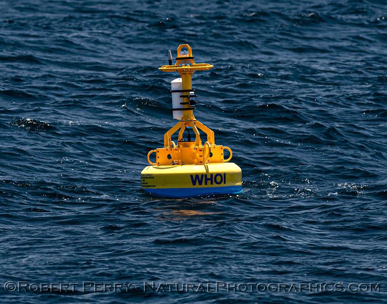 WHOI Whale Save buoy 2021 06-26 Sta Cruz Isl--011