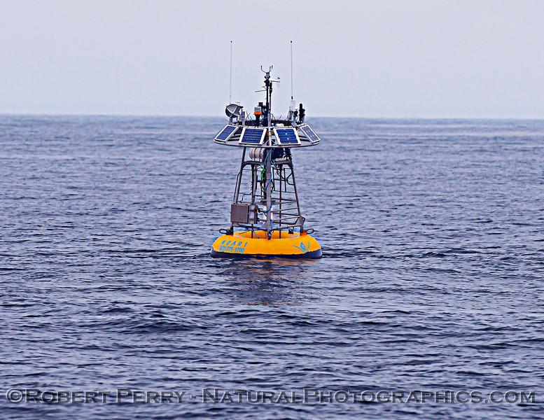 MBARI buoy F1 2011 04-19 Monterey Bay - 001