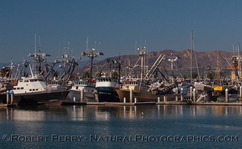vessel Loligo squid boats 2011 11-25 - Ventura Hbr - 011