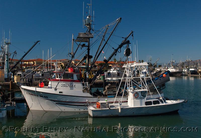 vessel Corva May Loligo squid boats 2011 11-25 - Ventura Hbr - 010