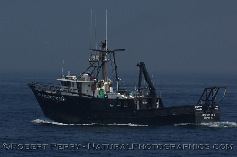 R/V Pacific Storm is the Oregon State University research vessel used to study blue whales (Balaenoptera musculus) in the Santa Barbara Channel.