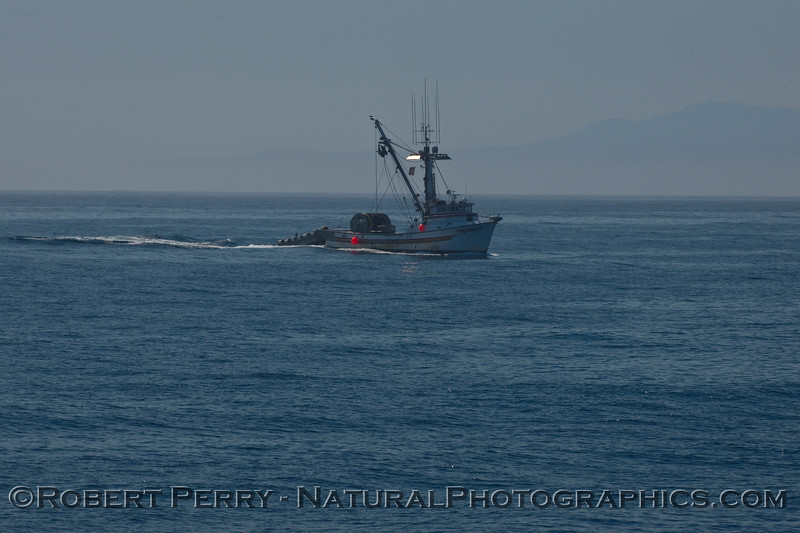 "Seiner ""Triunfo"" in the Santa Barbara Channel."