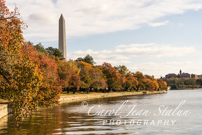 View of Washington Monument from Tidal Basin