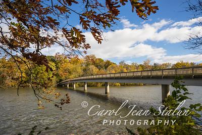 Theodore Roosevelt Island Bridge