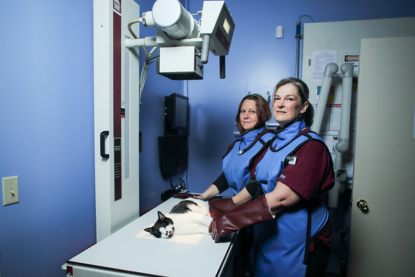WestPaws Veterinary Center