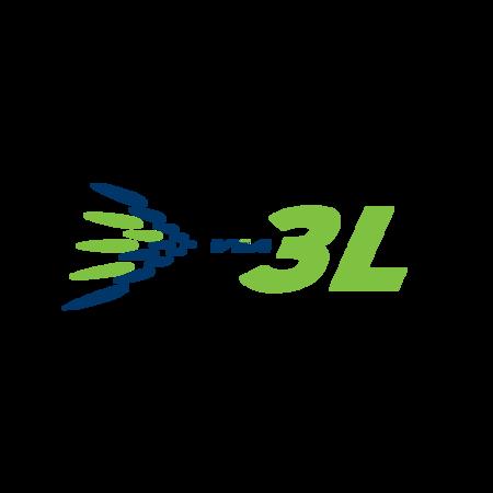 Via 3L logo