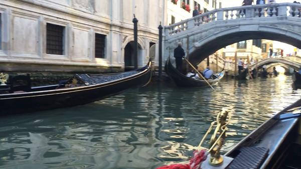 2016 - Venice Videos