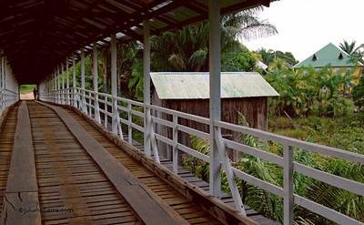 Ponte do Nel,Mapiá 2010