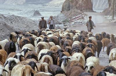 Karakoram Highway, Xinjiang