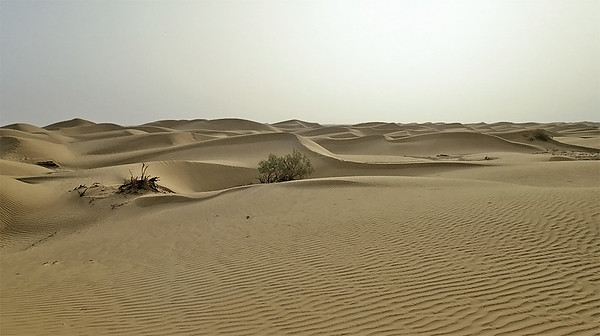 Central Taklamakan desert, Silk Road, Xinjiang