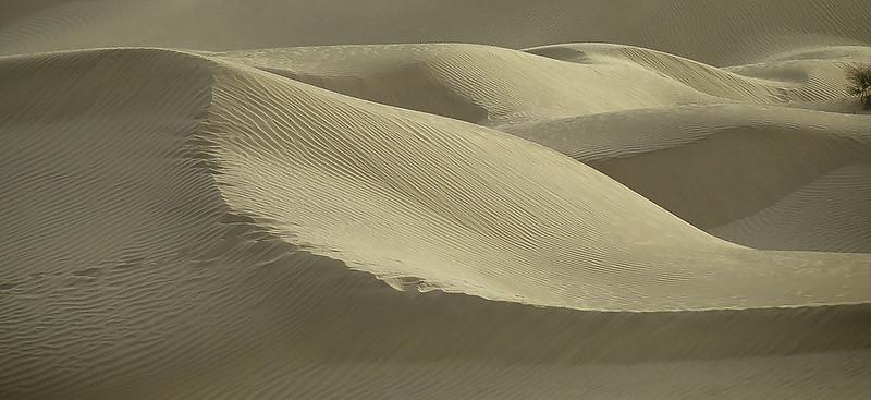 Taklamakan desert, Xinjiang, Silk Road
