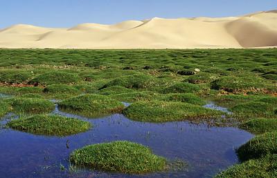 Khongoryn Els, Southern Gobi, Mongolia