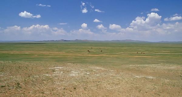Middle Gobi, Mongolia