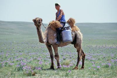 Middle Gobi desert, Mongolia