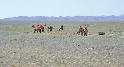 Southern Gobi desert, Mongolia